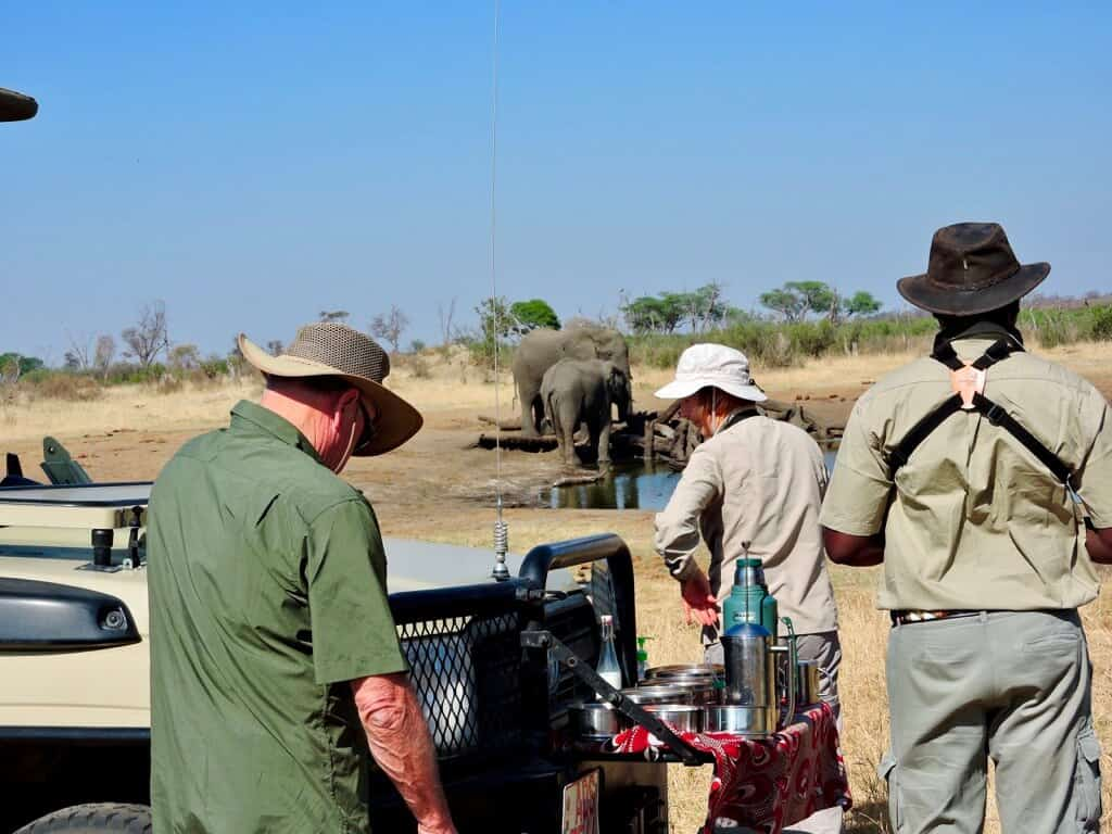 morning tea with elephants on your African safari