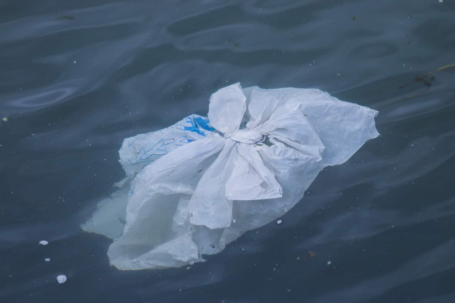 single use plastic bags
