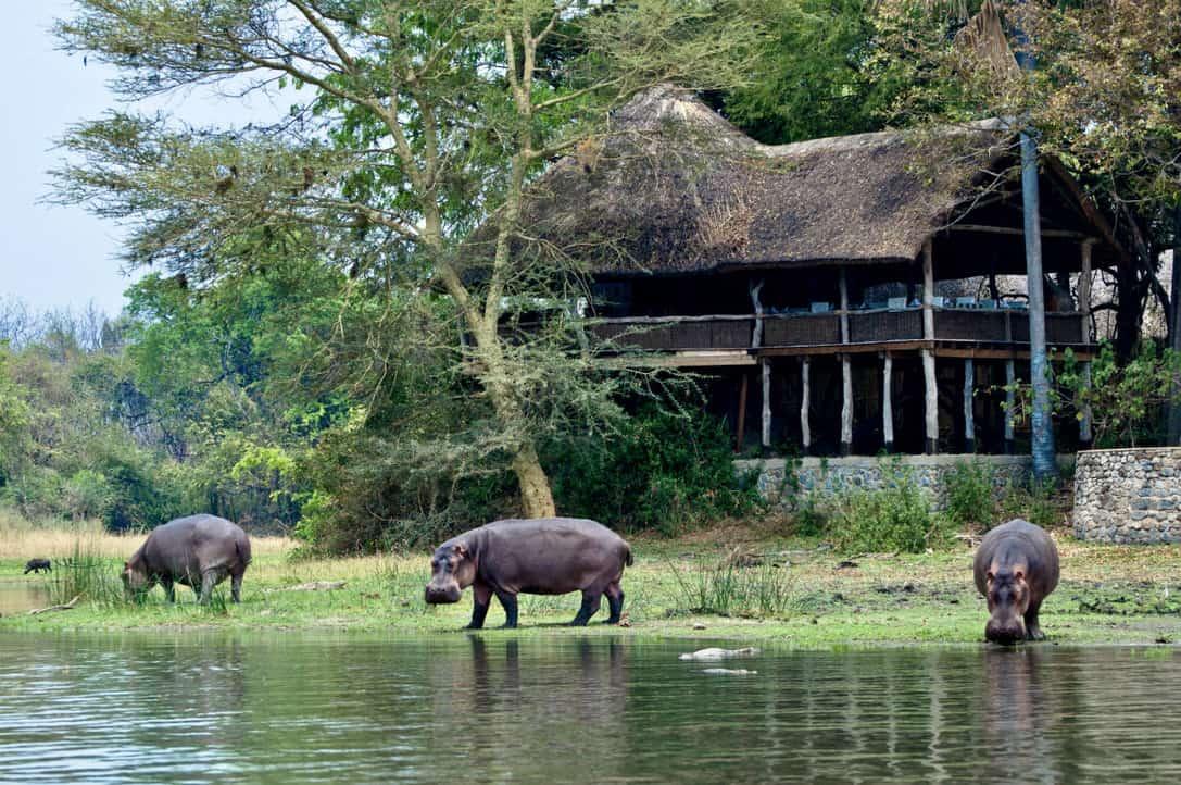 Mvuu lodge Liwonde Malawi